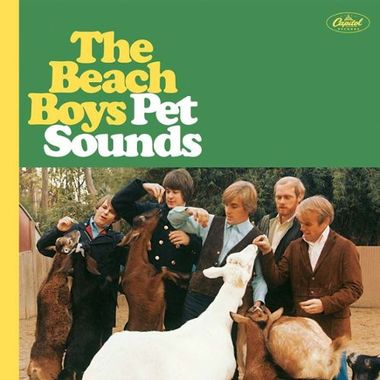 Coffret Petsounds 50th Anniversary